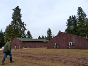 Barn (left) and dorm building for the theatre camp. And Gary, of course.