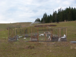 Our enclosed garden sits alongside the ponies' corral. Behind it is our high tunnel, still under construction.
