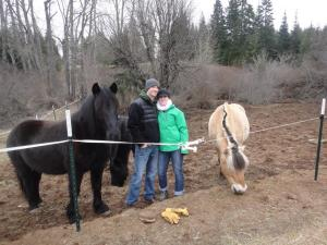 Chris and Kristen made easy work of grooming the ponies.