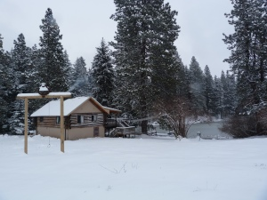 A snowy day, March 2, 2014